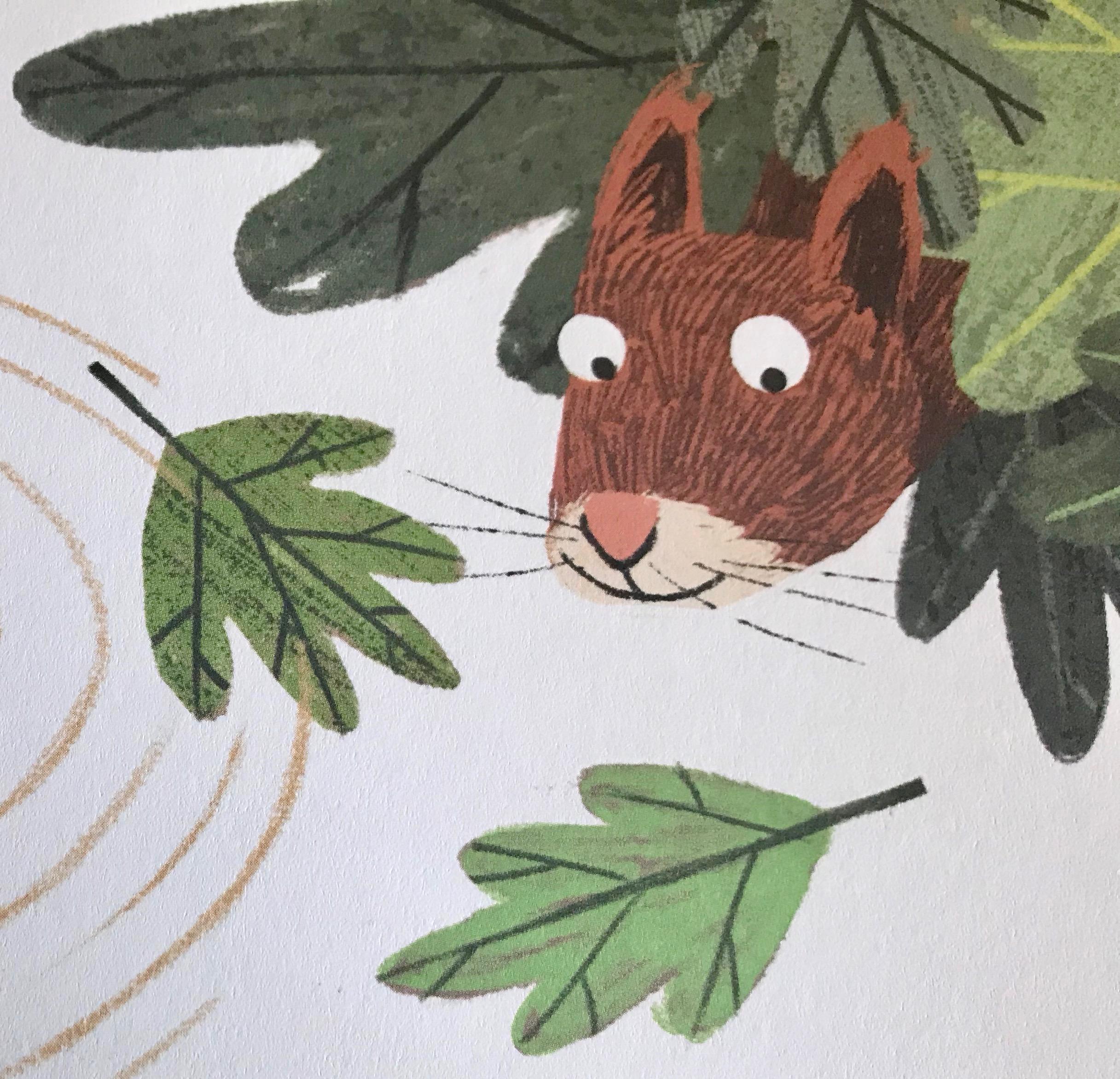 sb-squirrel